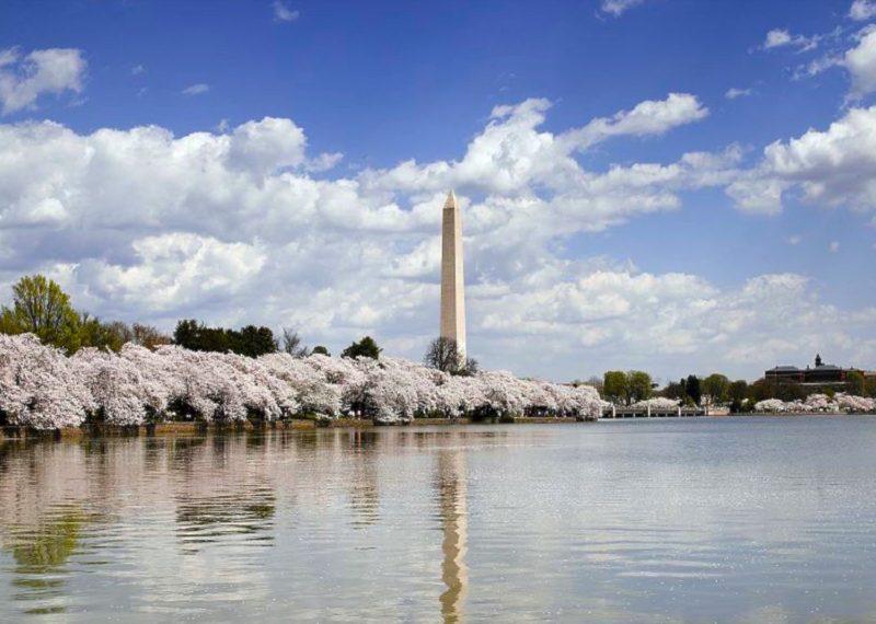 DC Washington Monument