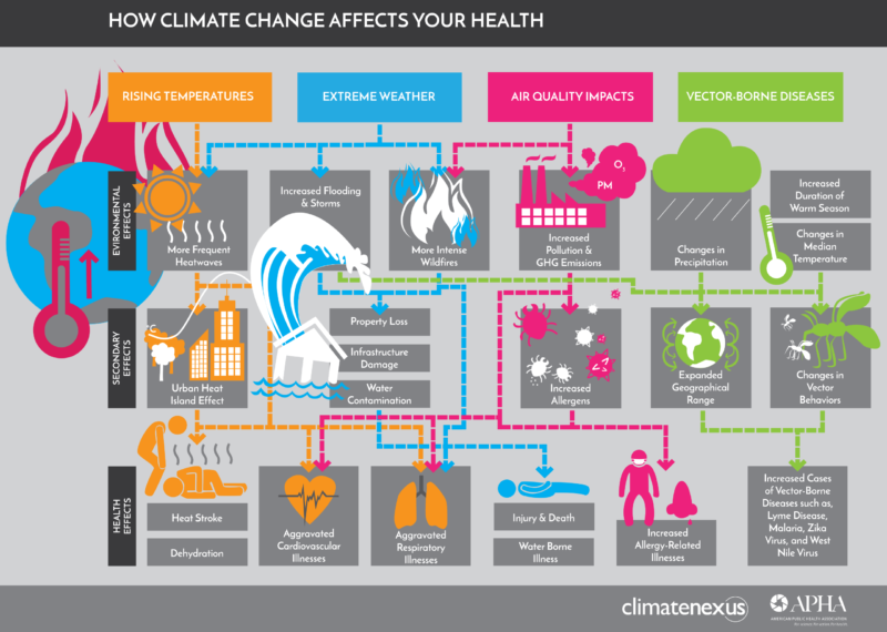 how climate change affects your healt illustration