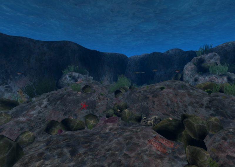 virtual desert at night