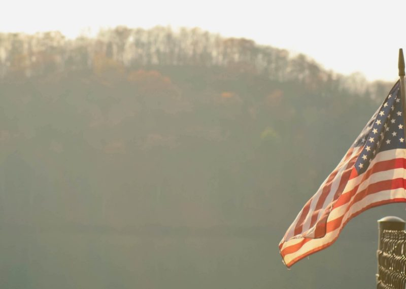 United States Flag, trees background