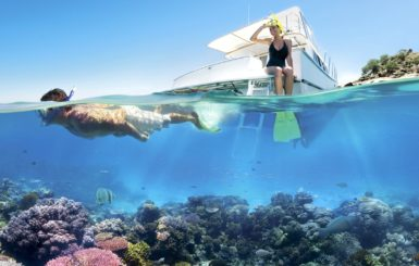 Snorkelers explore Australia's Great Barrier Reef