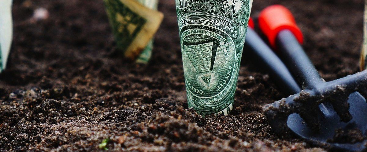 money seeded in the ground with a planting tools