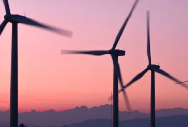 wind turbines at the sunset