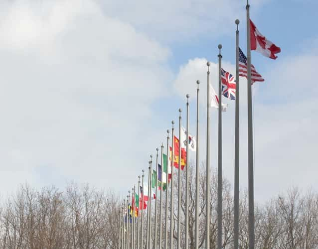 flags displayed in line