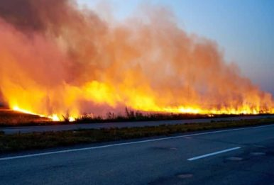 wildfire along the road