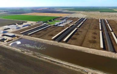 cow manure biogas pollution