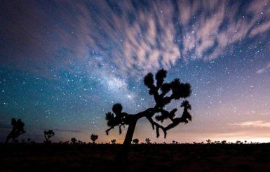 Desert sky at Joshua Tree National Park. Source: Pixabay